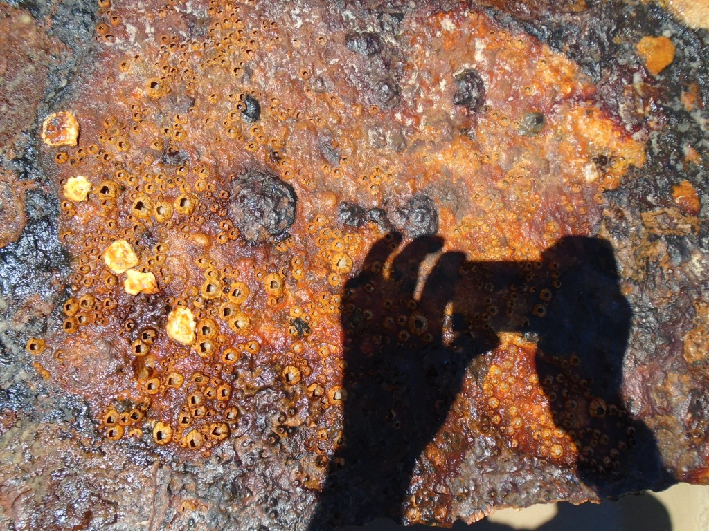 photographing rust